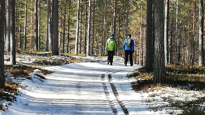Kohtaamisia luonnossa - Alueelliset koulutukset Joutsassa, Keuruulla, Laukaassa ja Petäjävedellä syksyllä 2021